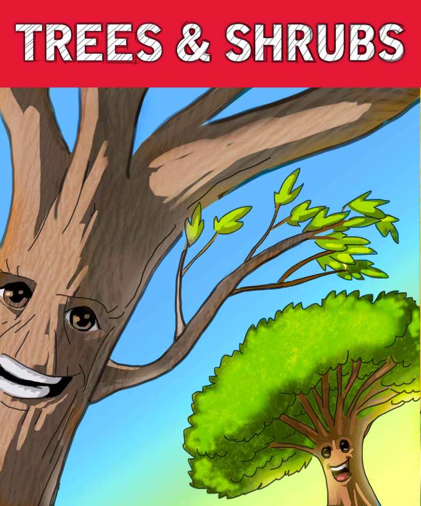 RS_SVCs_TreeShrub